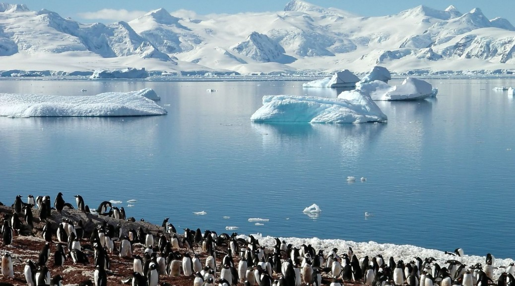 Antarctic Pollution Issues