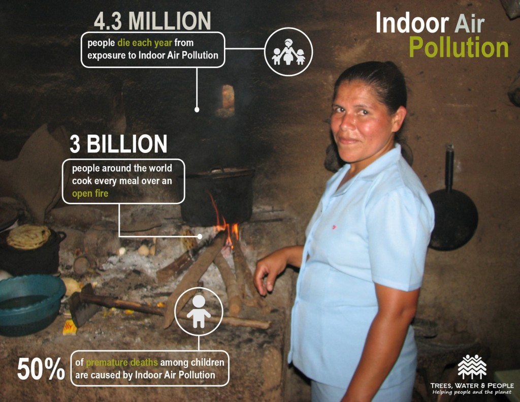 Figure 4: The results of exposure to indoor air pollution. Image: (Young 2014).